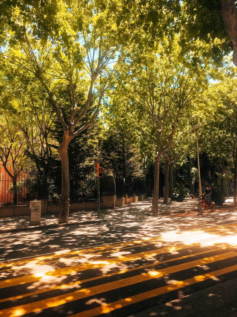 barcelona carril peatonal
